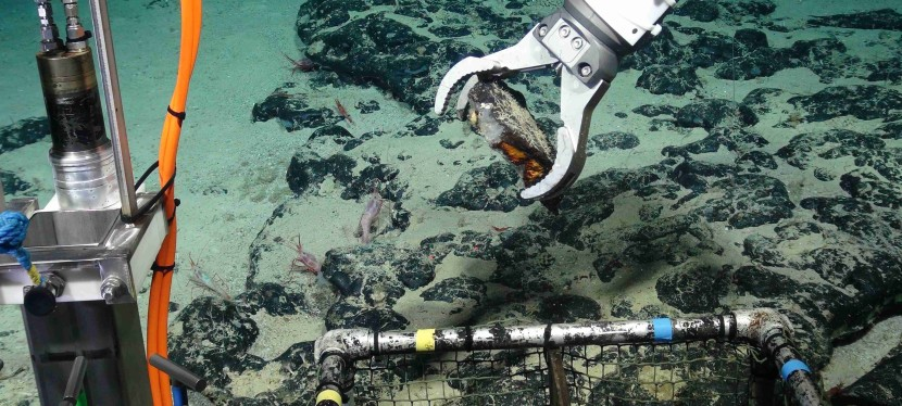 DEEP SEA MINING AT THE THRESHOLD: THE POLITICS OF THESEABED?