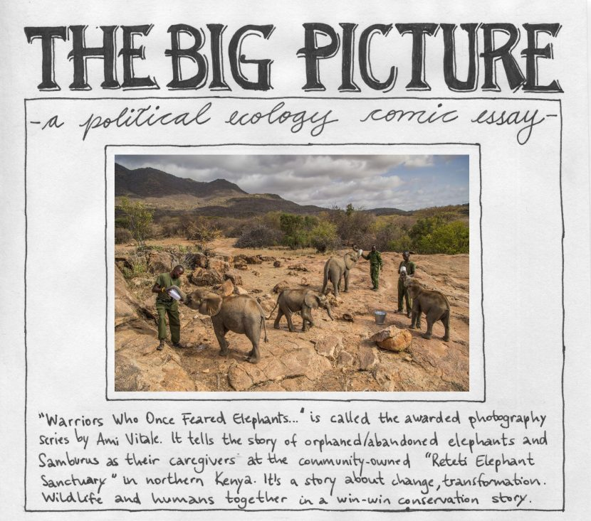 The big picture – a political ecology comic essay