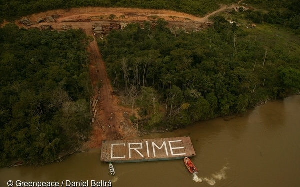 The Amazon fires are Bolsonaro's political crimes and call  for urgent action